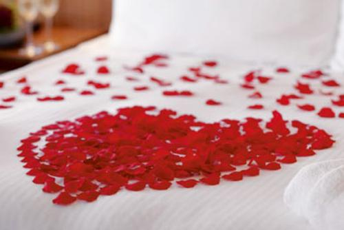 Broadoaks petals on the bed