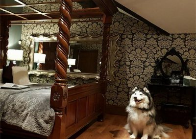 Dog Friendly Hotels Lake District Broadoaks Friends of Flo Gallery Image 10