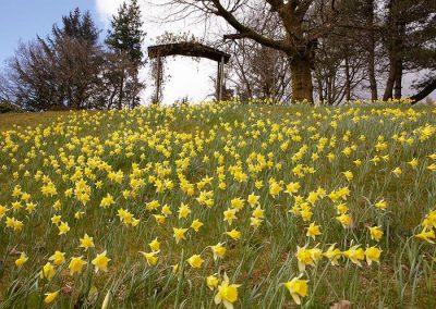Lake District Hotels Broadoaks Spring Gallery Image 9