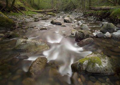 Lake District Hotels Broadoaks Spring Gallery Image 7