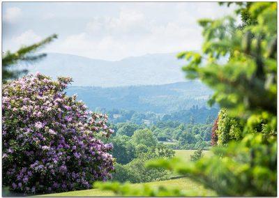 Lake District Hotels Broadoaks Summer Gallery Image 3