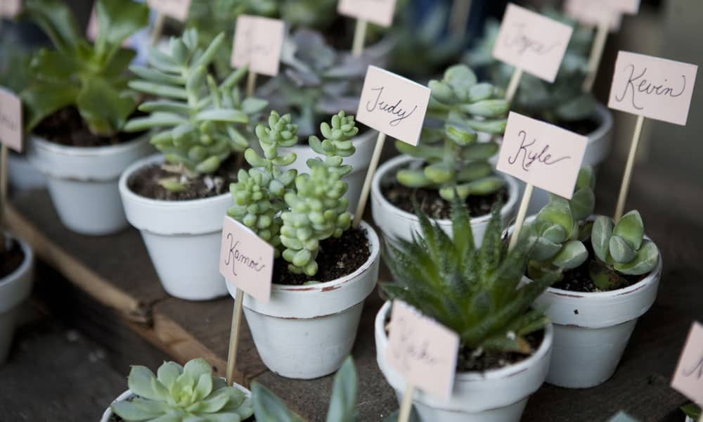 Lake District Wedding Venues Wedding Favours for All Budgets Blog Image